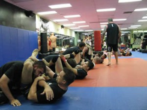MMA Training, Is it a Need or a Want?