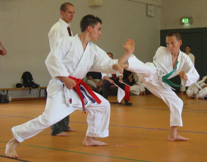 The Great School for Martial Arts